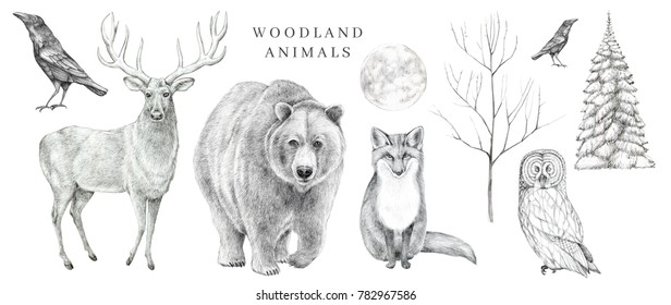 Deer Sketch Images Stock Photos Vectors Shutterstock
