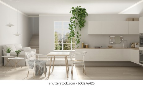 Scandinavian white minimalist living with kitchen, open space, one room apartment, modern interior design, 3d illustration