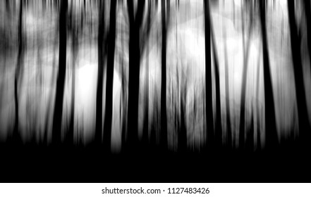 Scary Dark Forest Halloween Spooky Background Horror Wallpaper