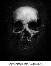 Scary Grunge Skull Isolated On Black Background. Design for t-shirt print with skull. Halloween wallpaper.