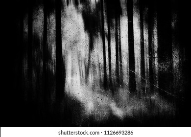 Scary horror forest, dark spooky nature wallpaper