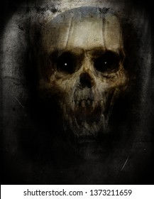 Scary horror skull isolated on grunge background, Spooky halloween wallpaper, Design for t-shirt print with skull.