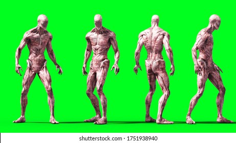 Scary monster isolate on green screen. 3d rendering.