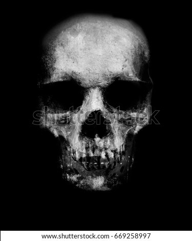 Scary Skull Isolated On Black Background Stock ...  Scary Skull Iso...