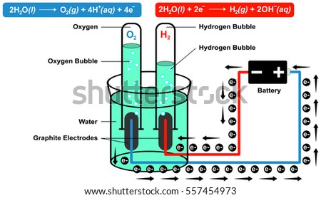 Electrolysis Diagram For Oxygen - Car Wiring Diagrams Explained •