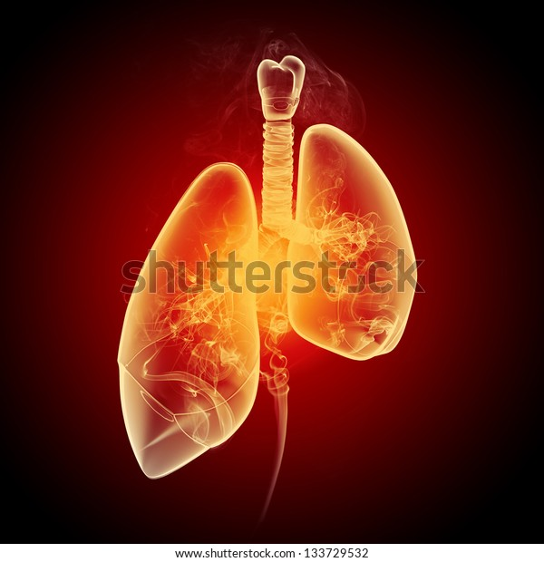 Schematic illustration of human lungs with the different elements on a colored background. Collage.