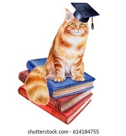 Scientist's cat. Books. Graduate hat. Education. Illustration. Watercolor