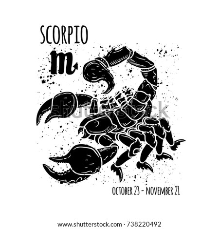 Scorpio Zodiac Sign Horoscope Symbol Astrology Stock Illustration