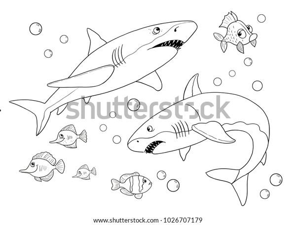 Illustration De Stock De Des Animaux Marins Ocean Requins Page 1026707179