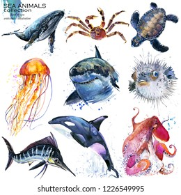 sea animals watercolor illustration set. whale. crab. sea turtle. jellyfish. shark. a fish. marlin orca. octopus.