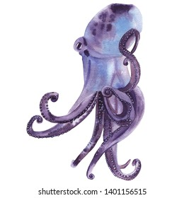 Sea and ocean creature watercolor illustration. Hand drawn and hand painted watercolor animal clip art. High resolution 300 dpi