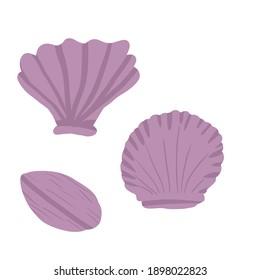 Sea shell cartoon pearl art illustration summer travel design card
