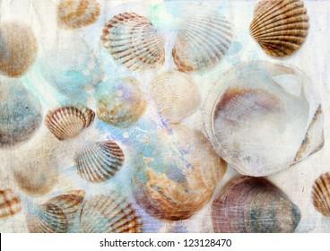 Sea shells on grunge background