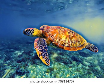 Sea turtle in blue sea water digital illustration. Vivid underwater landscape of tropical lagoon. Sea turtle vintage artistic poster. Tropic seashore wildlife. Marine animal green turtle. Sea tortoise