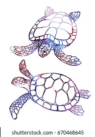 Sea turtle illustration isolated on white background. Perfect for invitations, greeting cards, postcard, banners, fashion print, poster for textiles, fashion design.