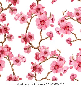 Seamles pattern with japanese sakura with pink flowers on white background. Good design for oriental style textile, wallpaper or wrapping paper.