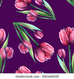 Seamless background, burgundy, red tulips, flowers on purple background, serene background, tulip with leaves, wallpaper, textiles, illustration, watercolor, handmade