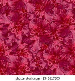 Seamless background. Flowers. Azalea. Stylization: watercolor.