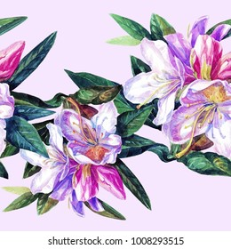 Seamless background of flowers azaleas painted watercolor.