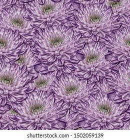 Seamless background. Flowers. Stylization: watercolor. Chrysanthemums.