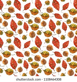 Seamless botanical pattern of dry autumn leaves. Watercolor painting on white background