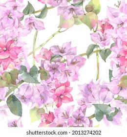 Seamless floral pattern of  tropical flowers. Hand painted watercolor illustration.