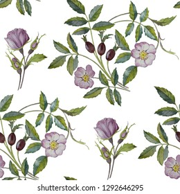 Seamless floral pattern  watercolor. Rosehip