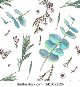 Seamless floral pattern. Waxflower, silver-leaf stringybark and lavender leaves. Flowers, buds, leaves and branches on white background. Isolated plants