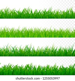 Seamless gorisontal grass border. Green grass pattern. Grass texture elements. illustration isolated on white