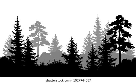 Seamless Horizontal Summer Forest with Pine, Fir Tree, Grass and Bush Black and Gray Silhouettes on White Background.