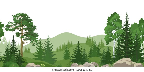 Seamless Horizontal Summer Mountain Landscape with Pine, Birch and Fir Trees, Green Grass on the Rocks.