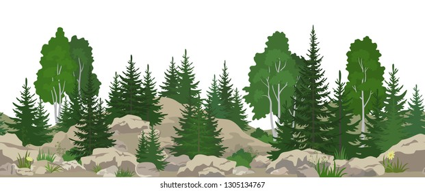 Seamless Horizontal Summer Mountain Landscape with Birch and Fir Trees, Green Grass on the Rocks.