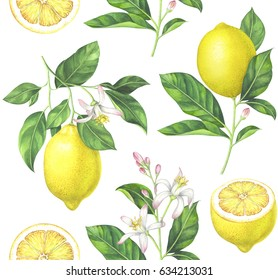 Seamless lemon pattern on white background. Hand drawn watercolor illustration.