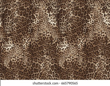 Seamless leopard pattern. Animal print.