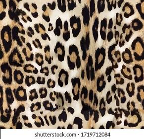 Seamless leopard texture, african animal print, fashion fur texture