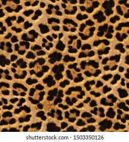 Seamless leopard texture, leopard skin