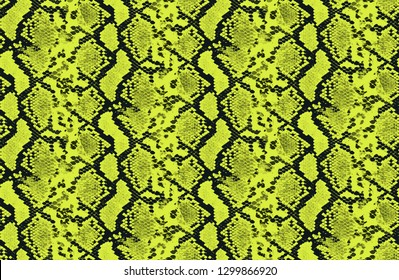 seamless neon color snake skin print pattern.