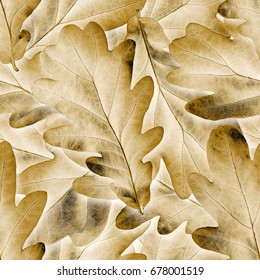 Seamless oak leafs background.