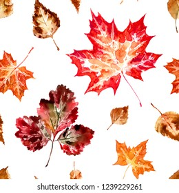 Seamless pattern of autumn leaves on a white background, watercolor painting, imprint.