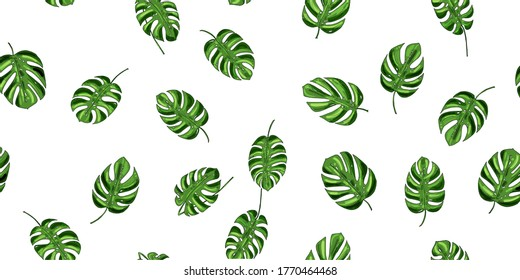 seamless pattern, background from green leaves of monstera on a white background for design, print, textile, raster copy