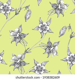 Seamless Pattern  with black and white columbine flowers or aquilegia on green background. Hand Pencil Drawing