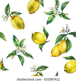 The seamless pattern of the branches of fresh citrus fruit lemons with green leaves and flowers. Hand drawn watercolor painting on white background.