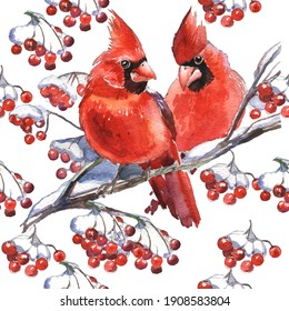 Seamless Pattern. Cardinal birds - a symbol of Christmas. Set of elements for design Isolated on white background. Realistic sketch drawing. Watercolor illustration.