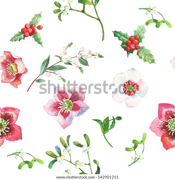Seamless Pattern with Christmas  Holly, Hellebore and Poinsettia. Hand drawn watercolor illustration