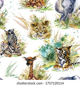seamless pattern with cute african safari animals. Jungle animal cubs watercolor illustration. Lion. Giraffe. Elephant. Zebra. Tiger