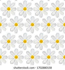 Seamless pattern with daisy, background with floral hand painted watercolor illustration