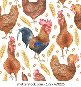 Seamless pattern depicting hens, roosters and wheat. On a white background. Watercolor hand drawing.