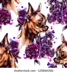 Seamless pattern with dogs and roses . Chihuahua with flowers. Blooming roses. Dog breeds. Drawing watercolor. Cute dog sitting on the background of paint stains.