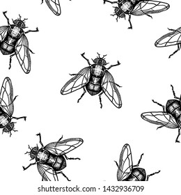 Seamless pattern. Engraving fly. Housefly. Hand drawn illustration. Black ink. For Halloween and more.