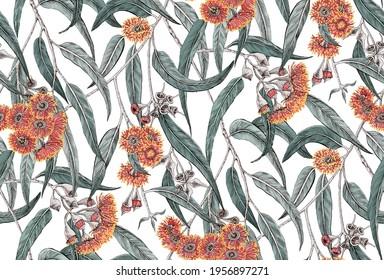 Seamless pattern with eucalyptus flowers and leaves. Eucalyptus grove.